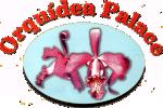 Padaria Orquídea Palace